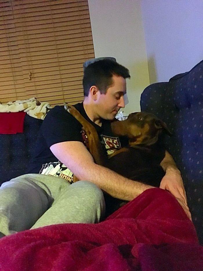 My Dog Gets Jealous When I Kiss My Husband