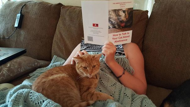 Walked In On My Girlfriend Reading To Our Cat
