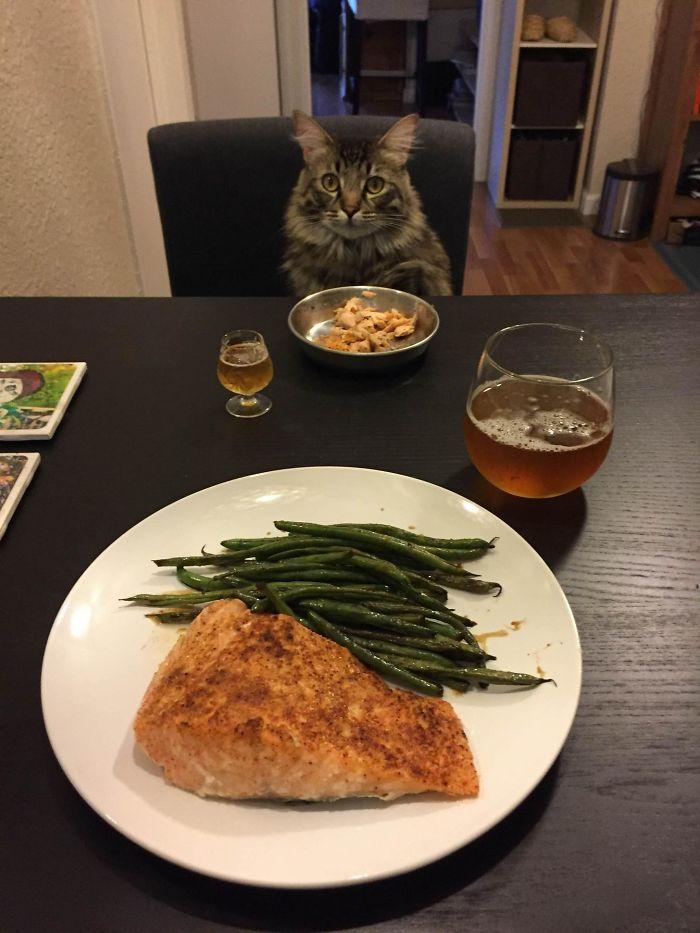 Cena para dos. Mi novia lleva mucho tiempo fuera