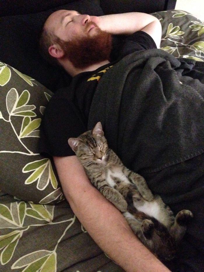 Mi mujer hizo una foto para mostrarme cómo dormimos juntos el gato y yo