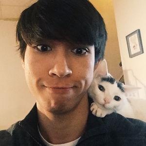 Mi novio y mi gato se llevan demasiado bien