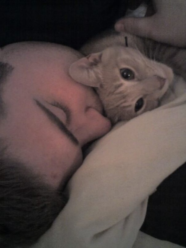 My Boyfriend And Cat Nap Like This All The Time