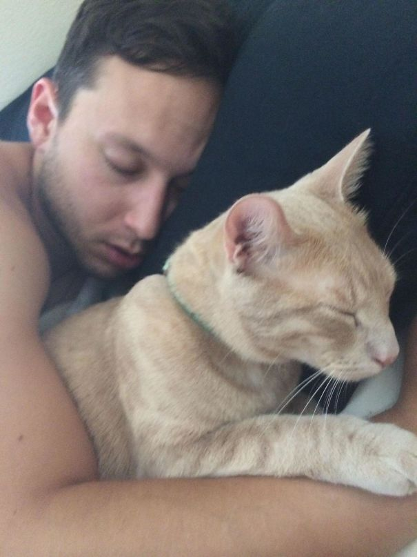 Caught My Boyfriend And My Cat Bonding