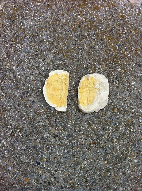 These Rocks Kinda Look Like Sliced Hard Boiled Eggs