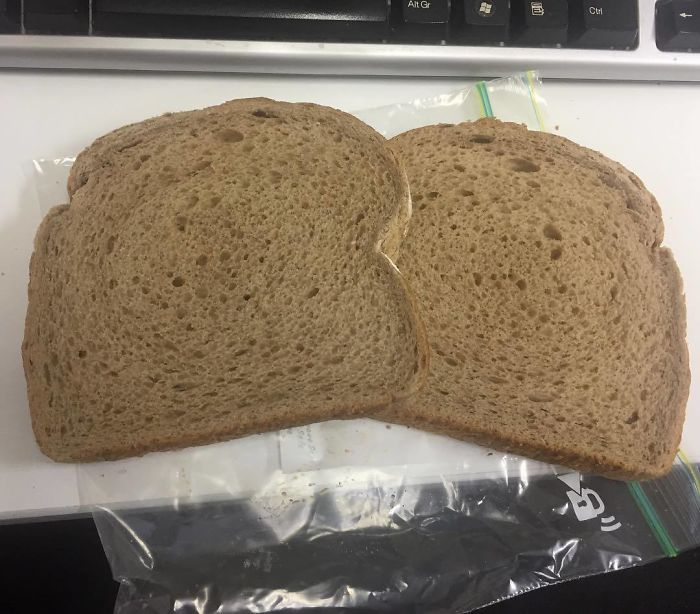 Pregnant Wife Forgot To Put Filling In My Sandwich Due To Her Mooshbrain
