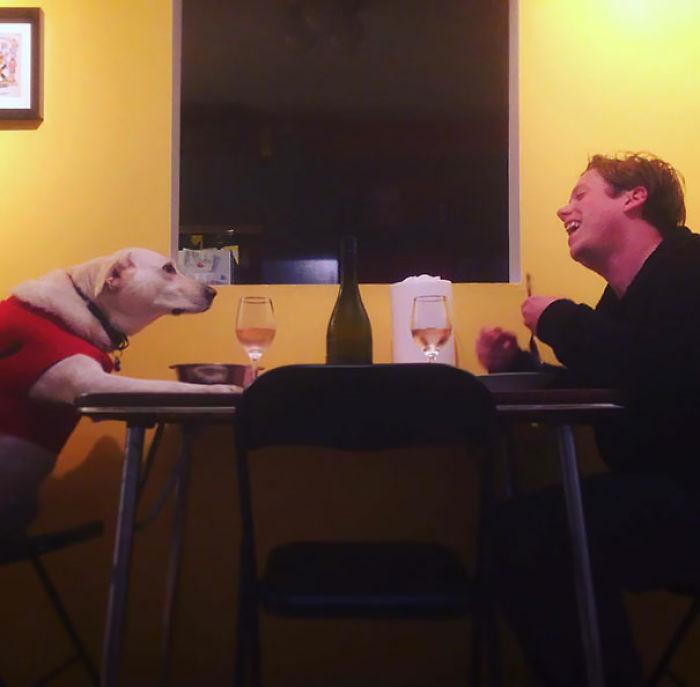 Mi novia está de viaje, así que el perro y yo tuvimos la cena juntos que siempre quisimos