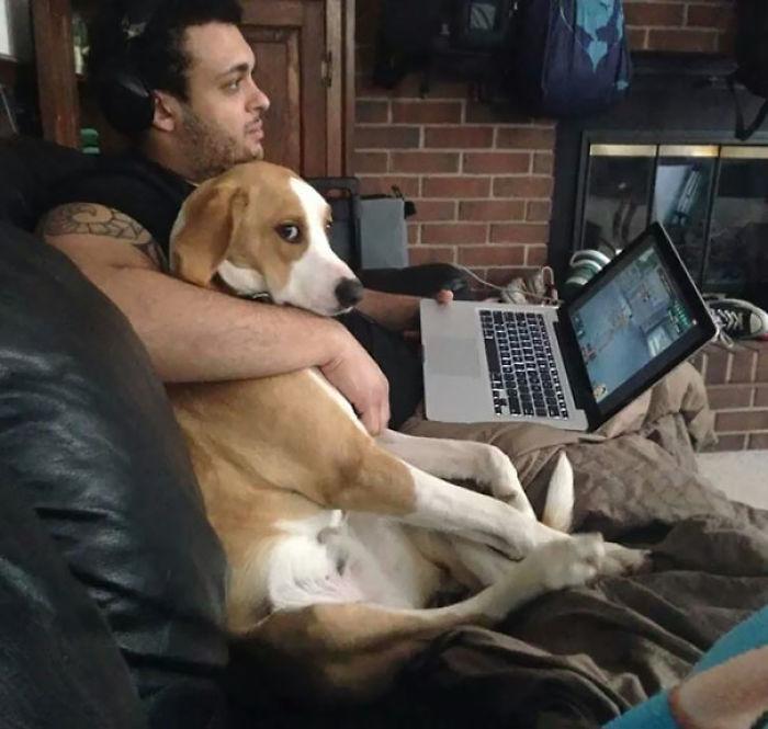 Mi novia nos ha hecho esta foto mía con mi perro celoso