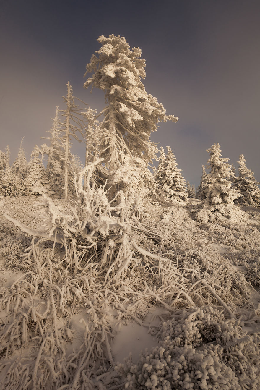 I Have Found The Magic Of Winter In The Polish Mountains