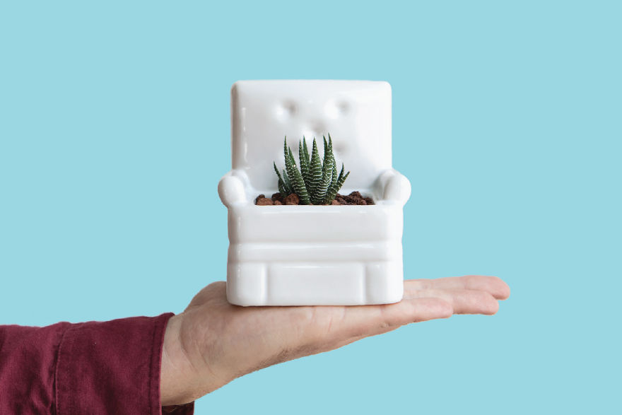 Relaaax And Make Your Plants Comfortable