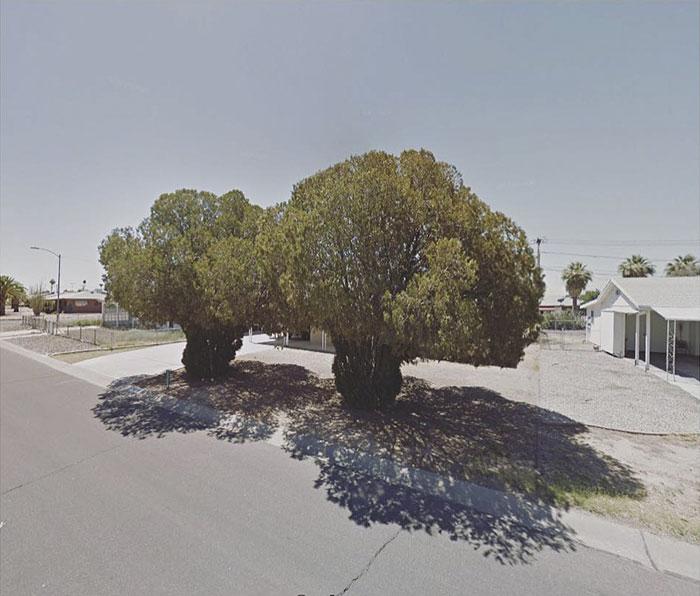 Oungtown, Arizona, United States