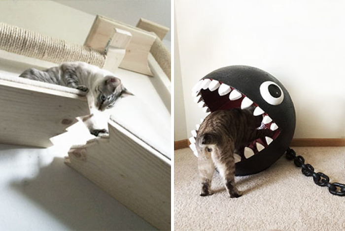 Unconventional Cat Furniture Ideas That Never Made It