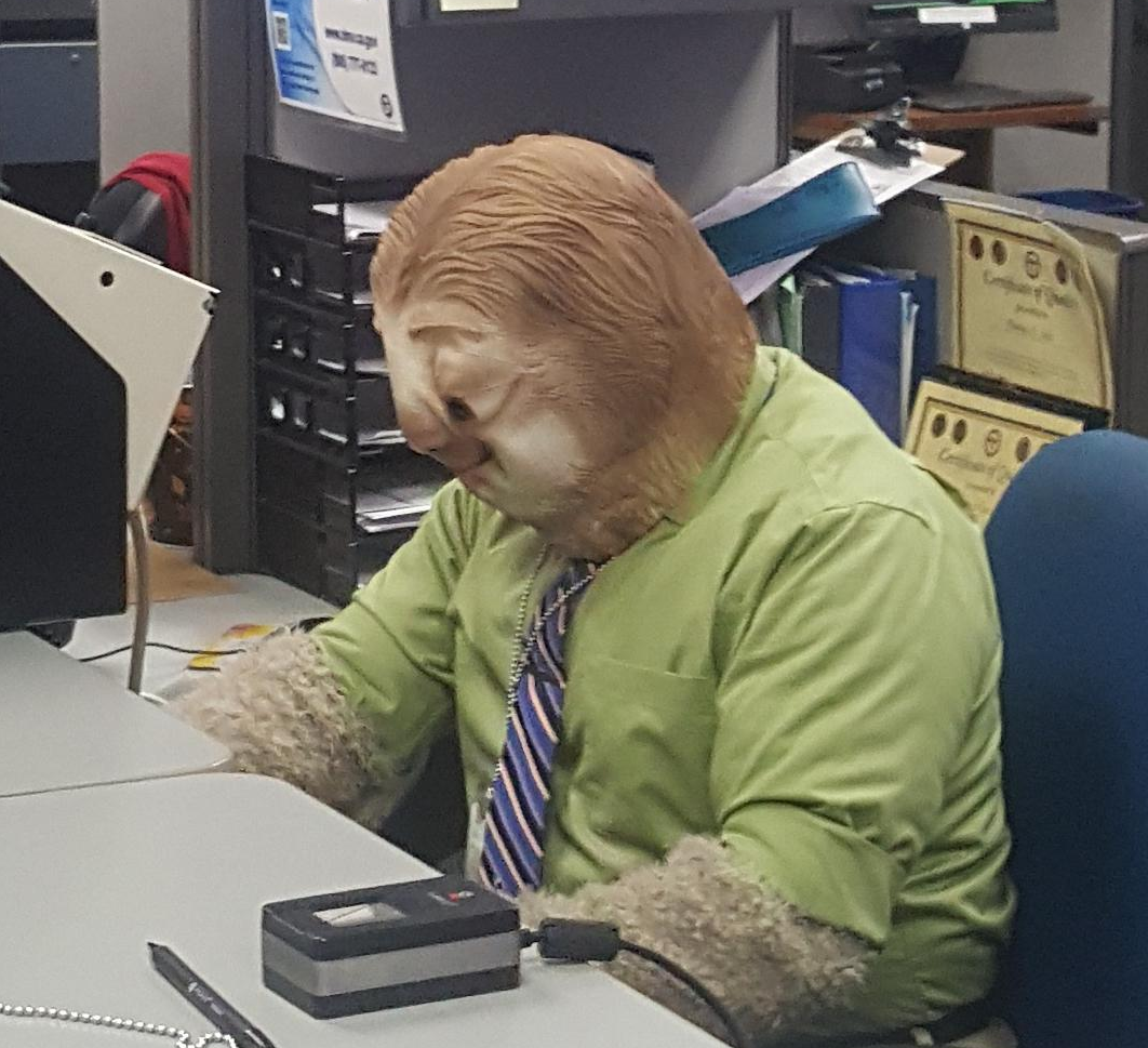 dmv-halloween-office-zootopia-character-17