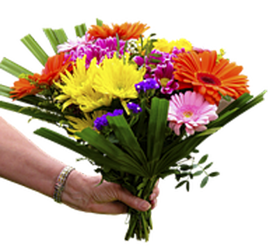 flowers-1369838__180-5a0f4ed3c637a.png