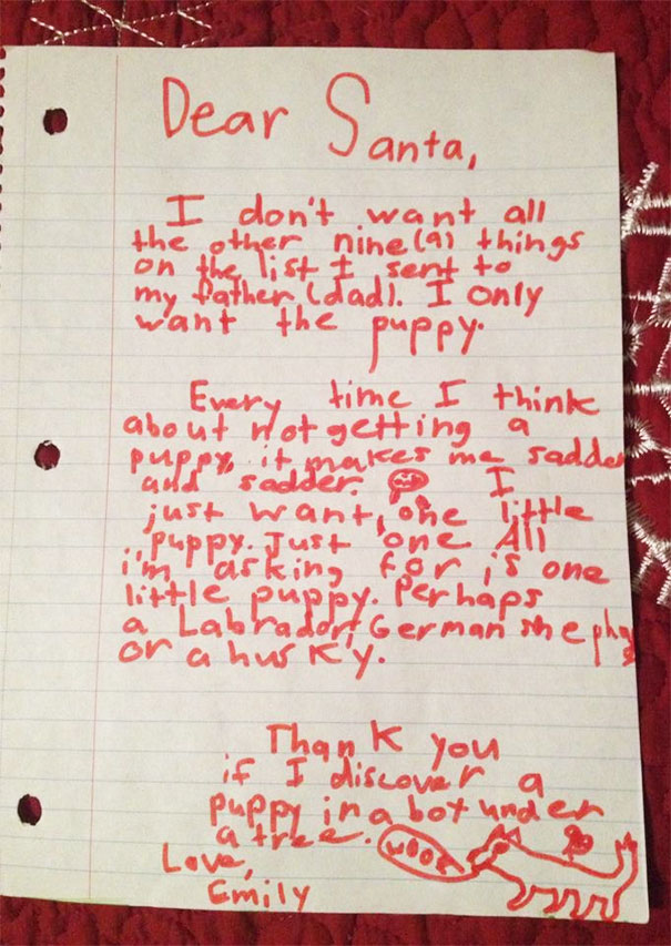 My Niece's Letter To Santa