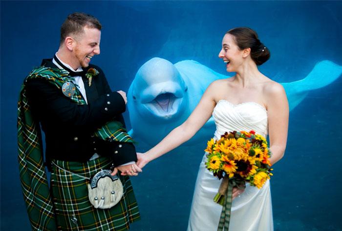 Invitado sorpresa a la boda