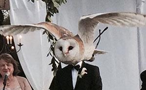 10+ De los más épicos photobombs en bodas