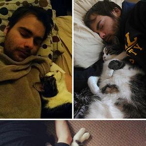 No importa donde duerma mi marido, el gato lo encuentra y se duerme con él