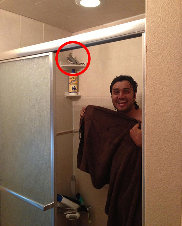 Today My Friend Came Home To Find Her Husband Showering With His Bird