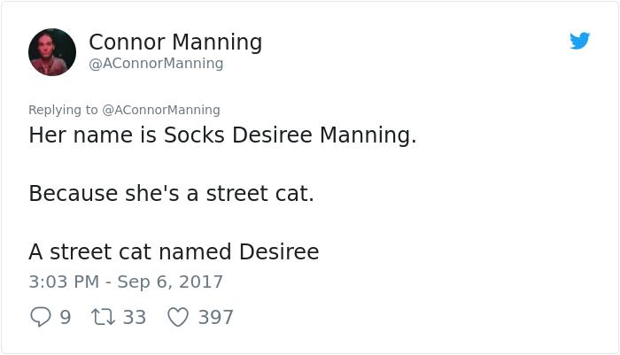 street-cat- follow-human-socks (18)