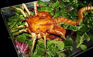 "Woman Makes Edible Roasted Alien Facehugger, And Now She's ""Not Allowed To Make It For Thanksgiving"""