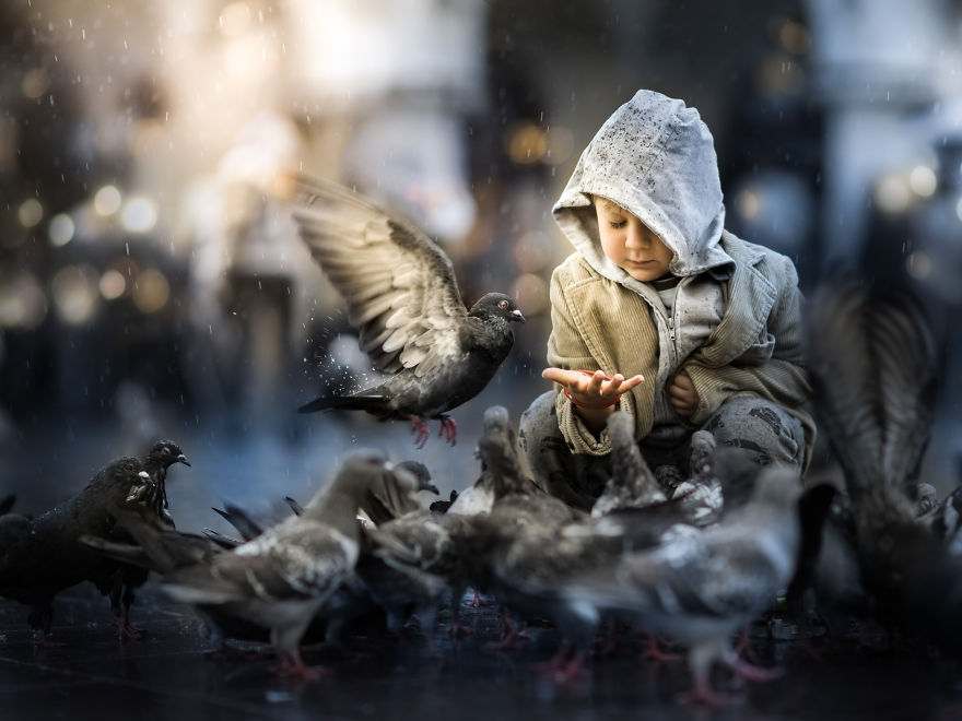 My Son Jaś And The Pigeons At Kraków Market Square