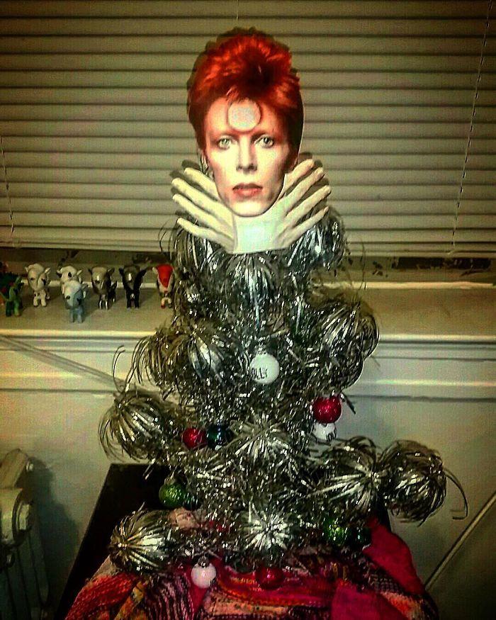 #9 Ziggy Star Dust In A Glam Rock Tree.
