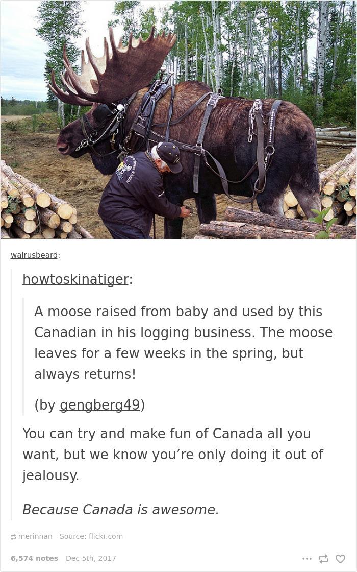 Funny Canada Post