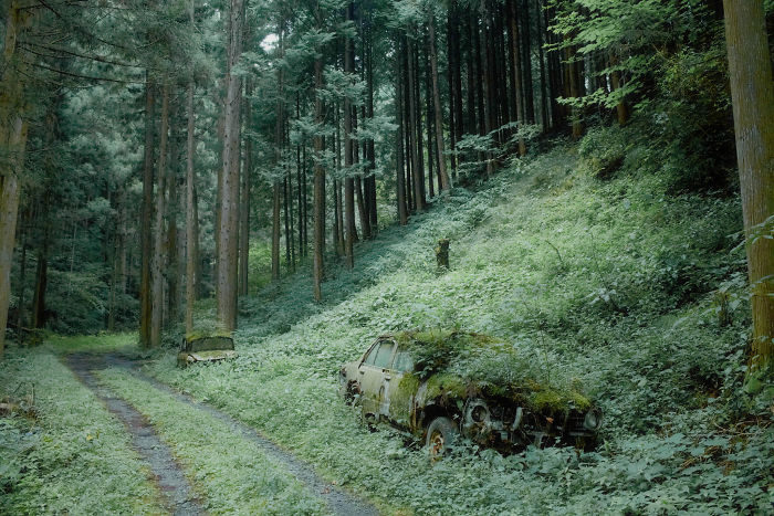 Two Cars Left Somewhere In The Woods Of Japan For Years