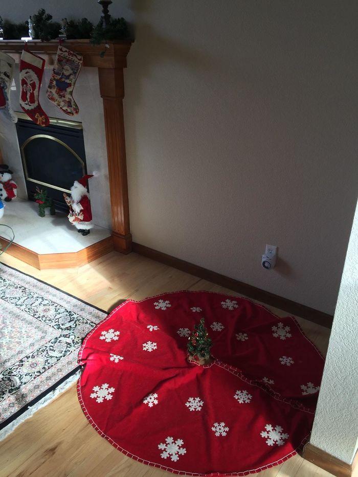Mi Novia Ha Terminado De Colocar Su Árbol De Navidad