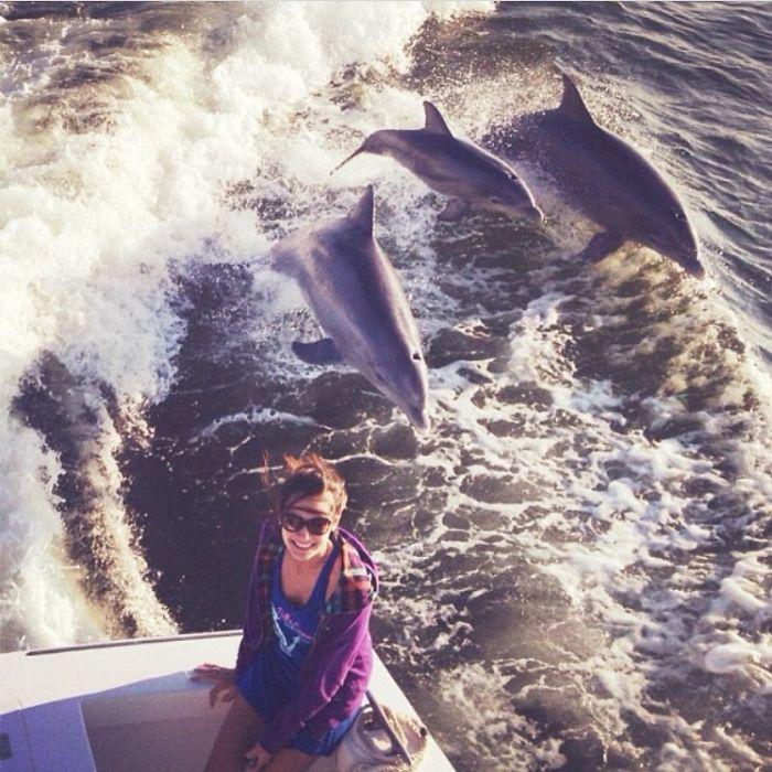 Estaba intentando sacar una buena foto del agua cuando en el momento justo saltó esta pareja de delfines con su cría