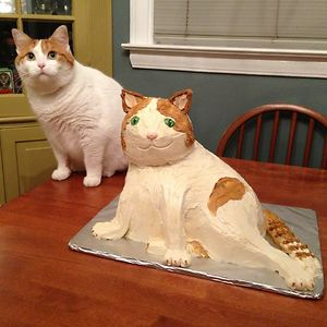 It's A Good Thing Cats Don't Care About Cake