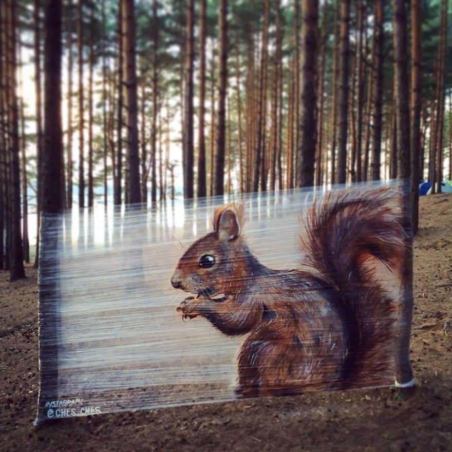 I Spray-Paint Animals On Plastic Wrap In The Forest
