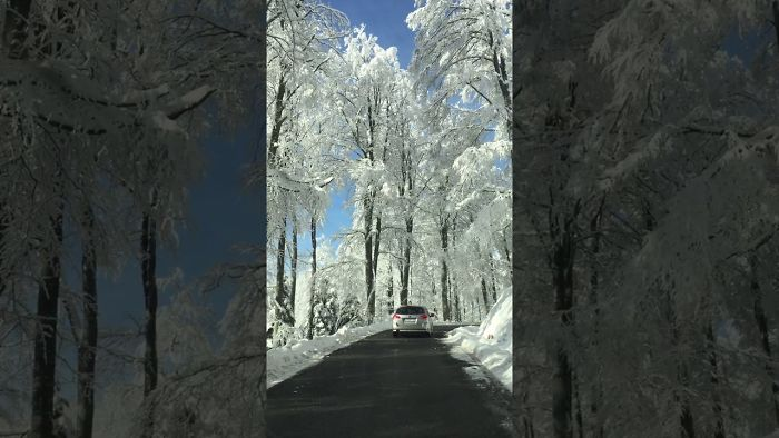 Frozen Beauty ,up To The Hill..