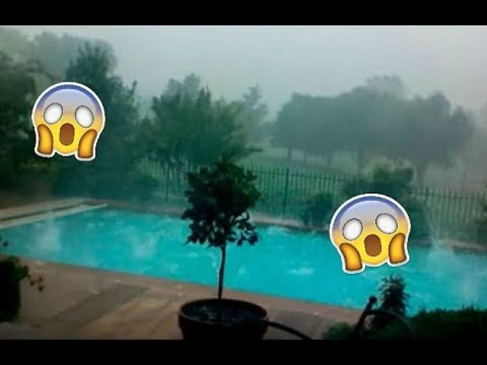 Man Hears Noises In His Pool And Looks Outside To See A Horrifying Scene