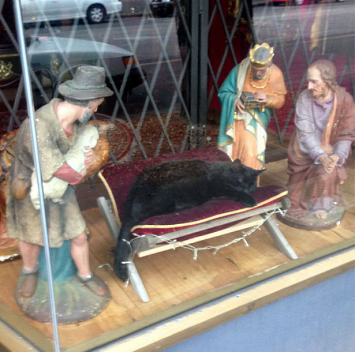 No Room For Baby Jesus