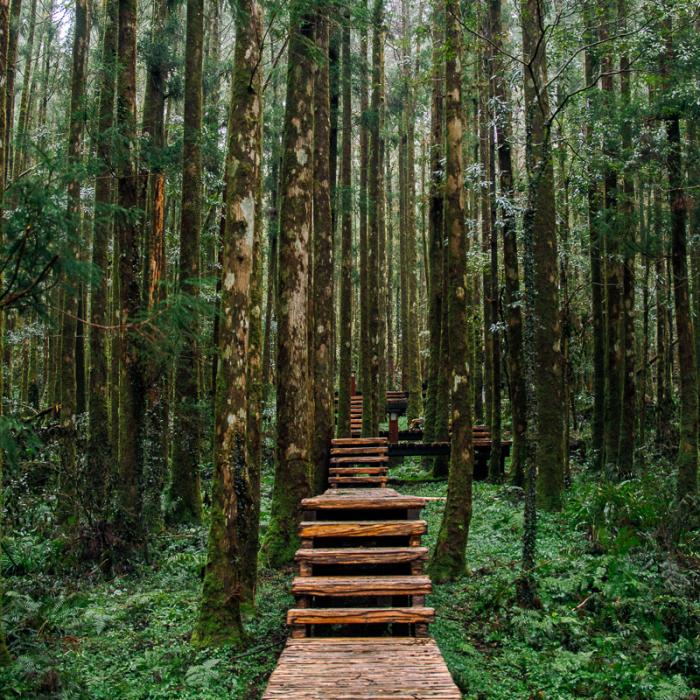 Taiwan Is A Photographer's Paradise