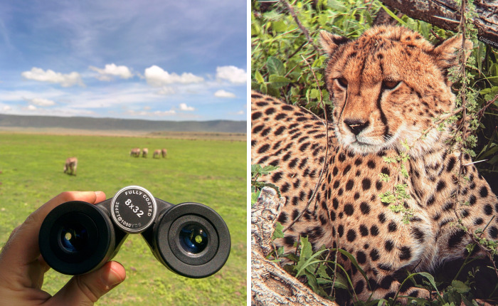 I Went On A Safari In Tanzania And I Only Used My Smartphone And A Pair Of Binoculars To Take These Photos