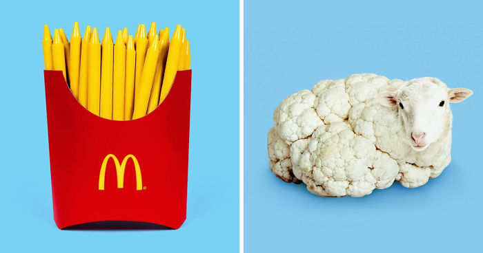 This Artist Combines Unexpected Objects Into One Confusing Artwork
