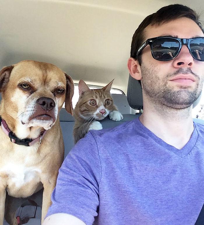 ¿Cuál de ellos va al veterinario por 1ª vez?