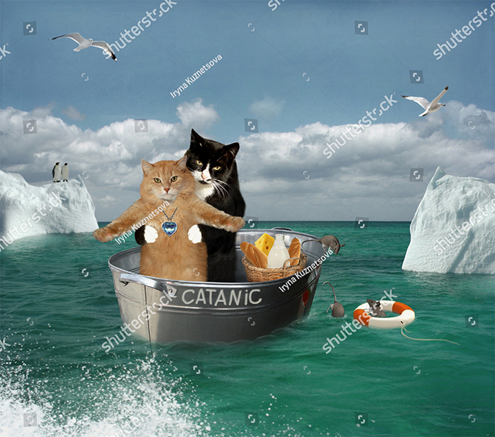 Catanic Featuring Leornado Dicatrio And Cate Winslet