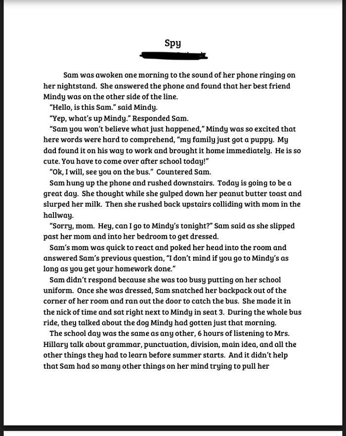 Spy: A Story By A 7th Grader