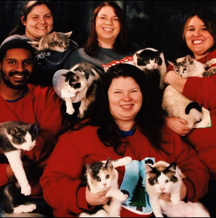 My Roommates And The 7 Cats We Had At The Time.