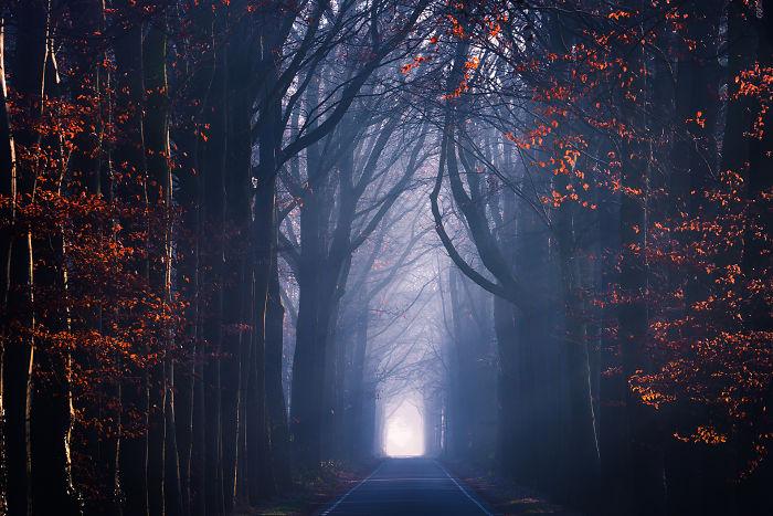 Tarde a finales de otoño