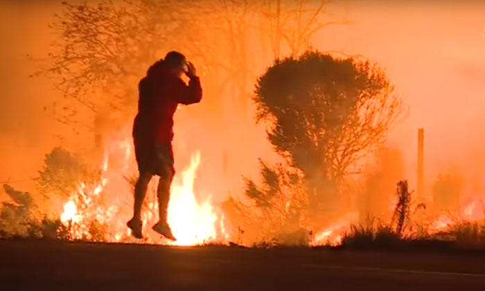 man-saves-bunny-wild-fires-california-2