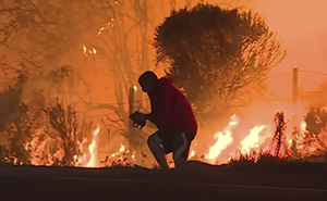Watch This Anonymous Hero Saving A Bunny From Wildfire And Then Just Vanishing Into The Dark