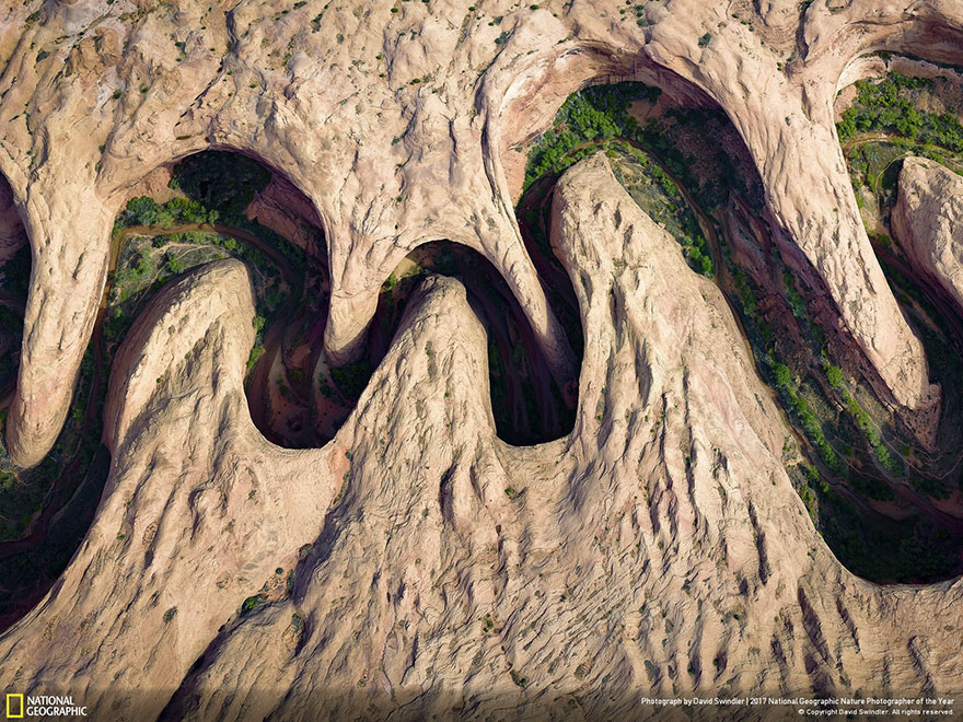 People's Choice, Aerials: Meandering Canyon, David Swindler