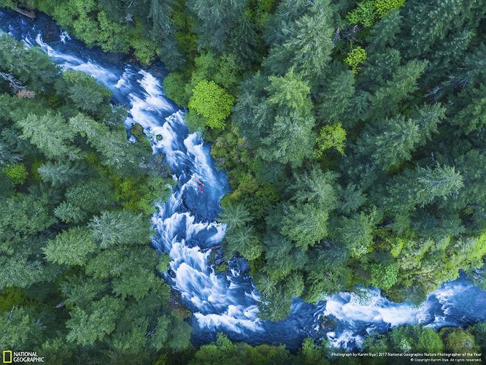 People's Choice: Kayakers On The River, Karim Iliya