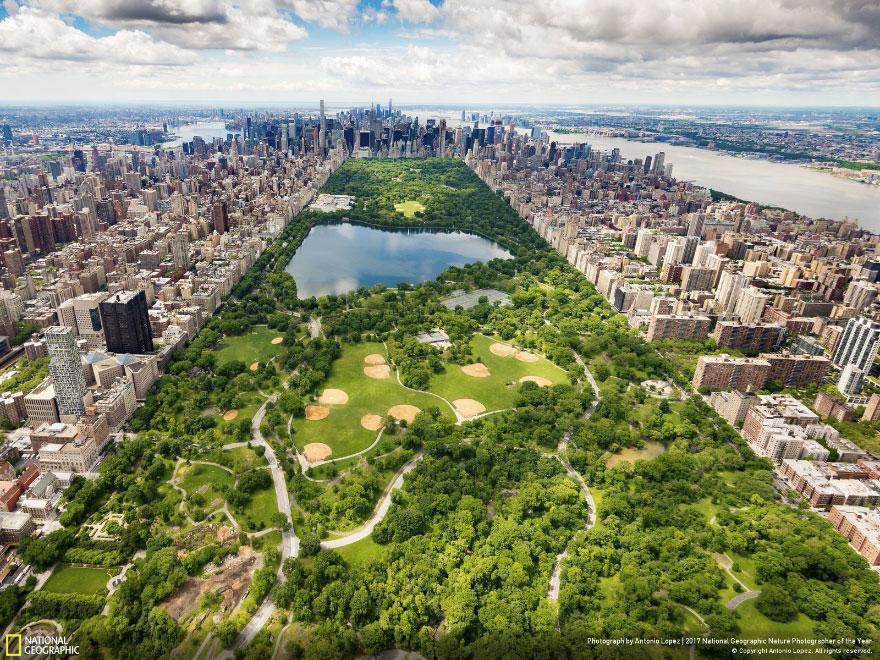 Central Park - Southern View, Antonio Lopez