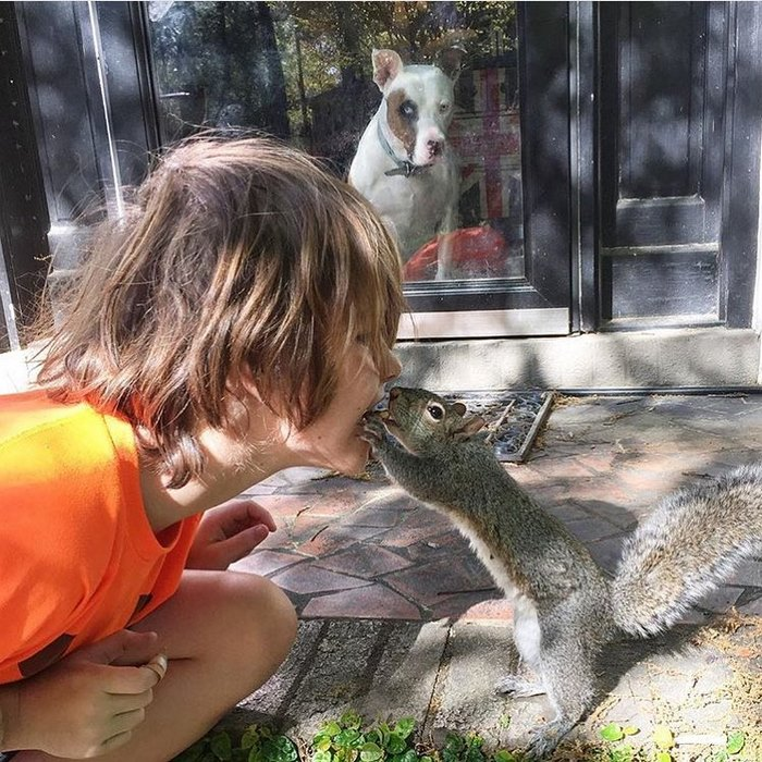 squirrel-come-back-save-family-bella-brantley-harrison-20