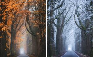 He fotografiado el mismo lugar exacto durante distintas épocas del año